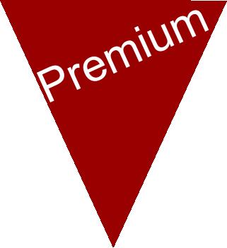 aumente_sus_ventas_premium2