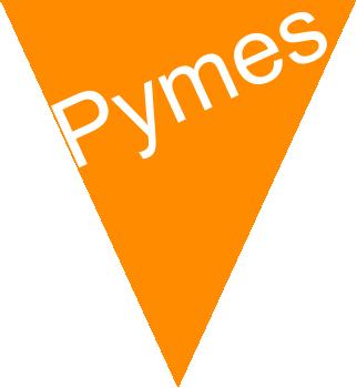 aumente_sus_ventas_pymes2